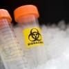 Бактериологическое оружие: биотерроризм и его последствия