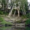 Геопатогенные зоны России: выдумка или особенные места?