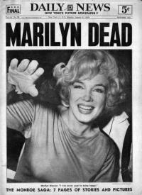 Marilyn Monroe Shag Rugs  eSaleRugs